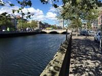 Dublin's Delights