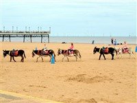 Skegness and Royal Sandringham